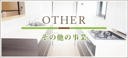 OTHER その他の事業
